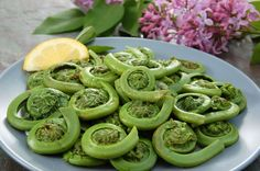 This simple sautée is an easy way to bring out the fresh flavor of fiddlehead ferns. The savory richness of golden garlic, should you choose to use it, highlights their naturally grassy flavor. Fiddlehead Fern Recipes, Vegetable Dishes, Vegetable Recipes, Vegetable Ideas, The Fresh, Ferns, Food Inspiration, Quinoa, Side Dishes