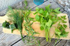 Cum se congelează pătrunjelul, mărarul, leușteanul, tarhonul, țelina - verdețuri congelate pentru iarnă   Savori Urbane Parsley, Spices, Herbs, Pune, Urban, Cooking, Plants, Recipes, Food