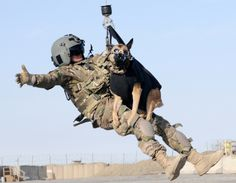 A flight medic is hoisted into a medical helicopter with Luca a Military Working Dog with 4th Stryker BCT 2nd Inf Div during a training exercise preparing flight medics for medical evacuation of working dogs at an FOB in Kandahar Province Afghanistan [2300  1784]