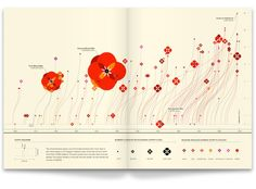 Graphic Design Inspiration – The Infographic History of the World