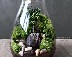 Woodland Garden Terrarium avec maison Miniature et par DoodleBirdie