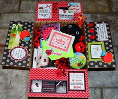 Missionary Box Moms : Ladybug Motivational Box ~ Find Joy in the Journey Missionary Care Packages, Missionary Gifts, Lds Missionaries, Ladybug Snacks, Cumpleaños Lady Bug, Activity Day Girls, Activity Days, Soap On A Rope, Dollar Tree Store