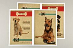 Fully editable Dog Walking Brochure with Textured Background Template complete with photos and graphics. Animal Shelter, Animal Rescue, Dog Love, Puppy Love, Dog Design, Print Design, Design Ideas, Design Inspiration, Pet Dogs