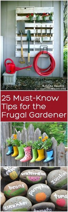 Gardening, frugal gardeners, frugal gardening tips, popular pin, gardening hacks, gardening tips, save money gardening,
