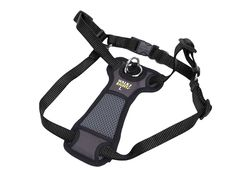 Coastal Pet Products Coastal Pet Walk Right! Front-Connect Padded Harness, Medium, Black *** For more information, visit image link.