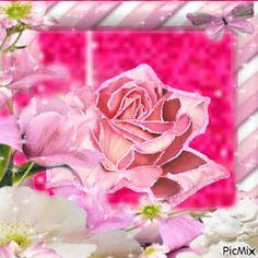 La fleur Flowers