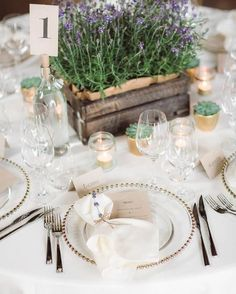 #Lavender #organic elements and classic ivory! What's not to love about this sweet and chic ensemble?      @elinejacobine #reception #tablesetting #weddingflowers #norway #floral #flowerstagram #visualsoflife #stylediaries #dreamwedding #elegantweddings #wedding #weddings #weddinginspiration #weddingphotography #luxurywedding #weddingstyle #weddingdesigns #summerweddings #springweddings  #weddingreception #weddingplanners #weddingphotographer #burlapandsilk  Explore our thoughtfully-curated…
