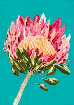 Poised to light up any room with sheer protea pleasure, Protea Party in turquoise will make anywhere spectacular. You will never feel anything but joy every time you look at this gorgeous botanical. Protea Art, Abstract Flowers, Watercolor Flowers, Abstract Art, Art Floral, Australian Artists, Art Challenge, Flower Art, Wall Art Prints