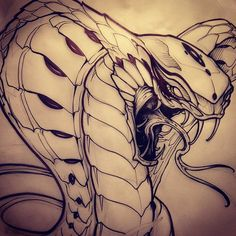 """143 Likes, 7 Comments - Devin Stacey Tattoo (@devin_stacey) on Instagram: """"More snakes on the drawing board. #tattoo #tattooart #art #artwork #artnerdy #illustration #vancity…"""""""
