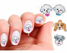 Nail Decals, Water Slide Nail Transfers, Dog Nail Stickers, Maltese (Bichon) Puppy, King Charles (Spaniel) or Schnauzer on Etsy, $2.65