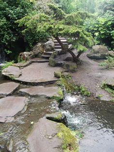 Fairy Glen - Sefton Park, Liverpool