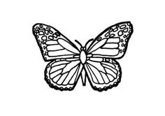 Butterfly coloring pages - Norton Safe Search