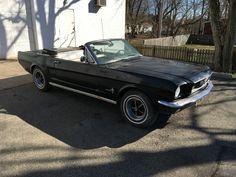 Ford Mustang Fun in The Sun | eBay