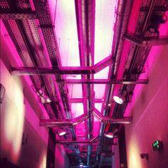En los pasillos de vente-privee.com el ambiente es... ¡unico!  Photo by #venteprivee