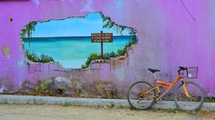 Take a biking tour of Holbox Island