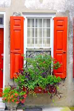 Irresistible colors in Charleston, South Carolina