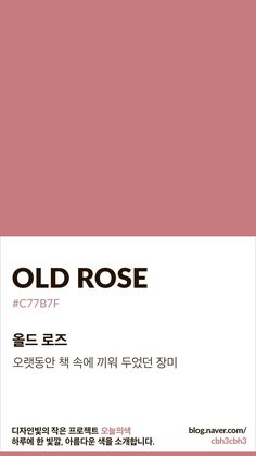 Color of today: Old Rose Design A small project of light Today's color is . Flat Color Palette, Colour Pallette, Colour Schemes, Color Patterns, Old Rose Color Palette, Mauve Color, Pantone Colour Palettes, Pantone Color, Gris Rose