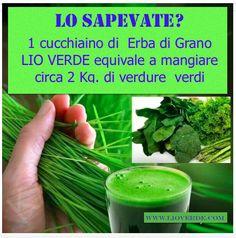 Vai in vacanza e non hai a disposizione verdure? Prova 1 cuchiaino di Erba di grano Lio Verde è facile e sicuro. Scopri di più su: http://www.lioverde.com/