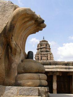 Indian Temple Architecture, Sanctum Sanctorum, Jain Temple, Tourist Places, Architectural Features, Lord Shiva, Real Beauty, Ancient Civilizations, Hinduism