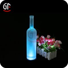 2013 Hot Sale Multi Color Led Decorative Light, View Multi Color Led Decorative Light, GF Product Details from Shenzhen Great-Favonian Elect...