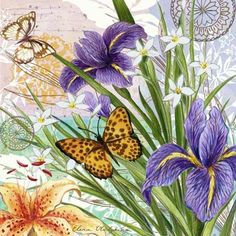 flower-collage-irises-and-butterflies