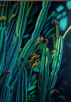 My personal favourite painting by French-Australian artist Pascale Boulle. Part of the Cactus Collection 2012.