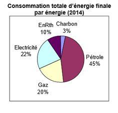 AAA ADEME L'énergie consommée en France provient principalement des énergies fossiles. Les énergies renouvelables ne représentent que 14 % de notre bouquet énergétique...