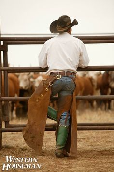Rodeo guts and Cowboy butts!