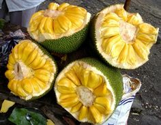 Jackfruit commonly known as langka in the Philippine island, nangka in Indonesia and the national fruit of Bangladesh. It was named after William Jack (1795–1822), a Scottish botanist who worked for the East India Company in Bengal, Sumatra, and Malaysia. Jackfruit (Artocarpus heterophyllus)