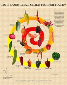 Do you like hot pepper? Learn How Chile Pepper Rate Pepper Chart, Worlds Hottest Pepper, Kitchen Magic, Unique Recipes, Easy Recipes, Beat The Heat, Food Places, Stuffed Hot Peppers, Hot Sauce