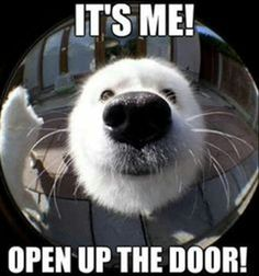 omg! well come on in and join the rest of the cutenesses! lol!