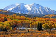 Beautiful Fall in Crested Butte Colorado!