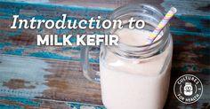 Introduction to Milk Kefir