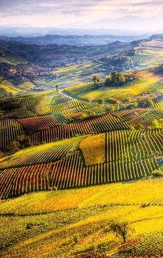 Region Piedmont (Pie