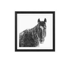 "Snowy Black Horse by Jennifer Meyers, 25 x 25"", Ridged Distressed, Black, Mat"