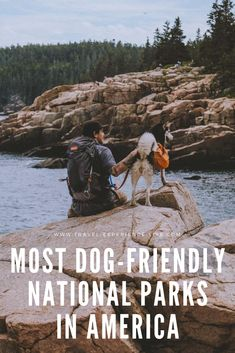 America's most dog-friendly national parks you can explore with your pets, including Acadia, White Sands, Mammoth Cave and Cuyahoga Valley.