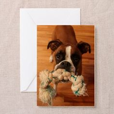 Greeting Cards on CafePress.com #boxer #boxerdog #boxers #blankcards