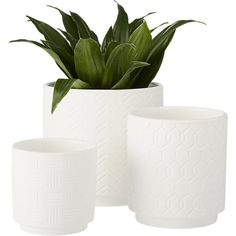 Shop 3-piece white loom planter set.   Diamond, chevron, abstract basket weave––three unique textures emerge on a trio of matte white stoneware.  Perfect for indoor planting.