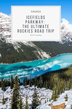 Icefields Parkway   An Incredible Road Trip through the Canadian Rockies. The Icefields Parkway carries you from Banff to the Columbia Icefields in Canada with waterfalls, glaciers, hiking and wildlife to see along the way. ***** What to see in Banff   Jasper National Park   Banff to Columbia Icefields   Athabasca Glacier   Glacier Walk   Glacier Skywalk   What to see in Banff Canada   Outdoor Activities Banff   Canadian Rockies Tours   Peyto Lake  