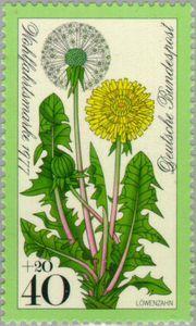 dandelion, stamp from West Germany. [dandelion, Taraxacum officinale, Asteraceae]