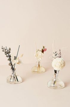 Floral Bouquet Diffuser Set by Anthropologie in White Size: All, Fragrance Anthropologie Home, White Cedar, Glass Vessel, How To Preserve Flowers, Apothecary Jars, Orange Flowers, Floral Bouquets, Fragrance Oil, Dried Flowers