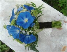 Blue Morning Glories, White Queen Anne's Lace, Fern Hand Tied Wedding Bouquet