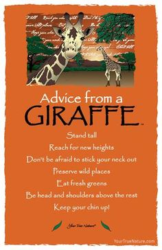 Spirit animal totem advice from a giraffe. Giraffe Art, Giraffe Quotes, Giraffe Pics, Giraffe Decor, Animal Spirit Guides, Maila, Animal Totems, Wisdom Quotes, Advice Quotes