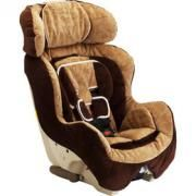 Potential new carseat