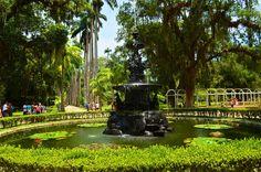 Lugares para visitar no Rio de Janeiro-Jardim Botânico