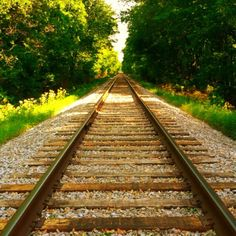 Railroad tracks Oak Grove, KY