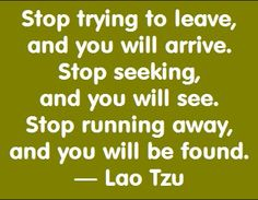 Stop trying to leave, and you will arrive. Stop seeking, and you will see. Stop running away, and you will be found. - Lao Tzu