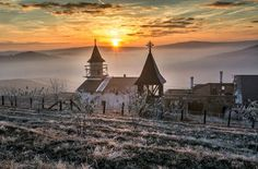 Cold morning Photo by Grigore Roibu -- National Geographic Your Shot