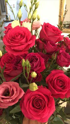 Love Rose Flower, Beautiful Rose Flowers, Love Wallpaper Download, Wallpaper Downloads, Scenery Wallpaper, Red Roses, Floral Arrangements, Girls, Plants