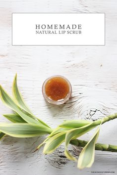 Easy Homemade DIY Lip Scrub!